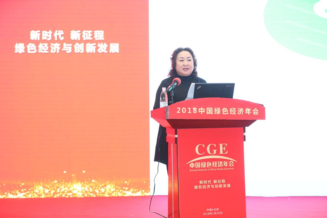 海赛普新能源高科技(江苏)有限公司董事长钱媛华女士